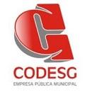 Companhia de Desenvolvimento de Guaratinguetá/SP - CODESG (2/2019)