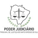 Tribunal de Justiça do Mato Grosso do Sul (Juiz Leigo)